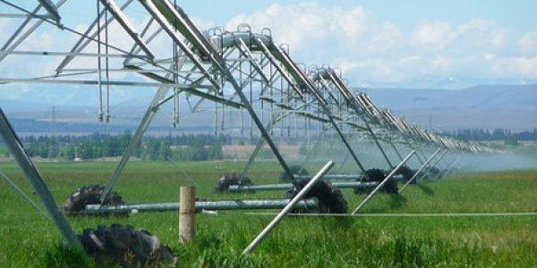 irrigation-403371__340